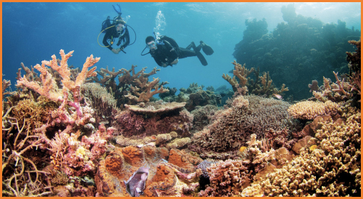 Underwater_Australia